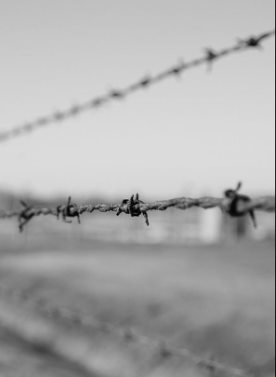 Fence at Auschwitz-Birkenau death camp.